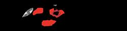 Norges Castingforbund Logo